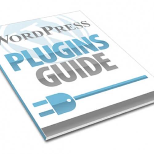 viet wordpress plugins