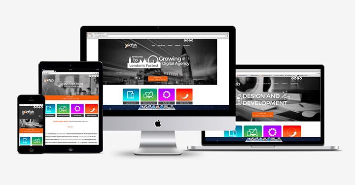 thiết kế web thương hiệu sản phẩm mới